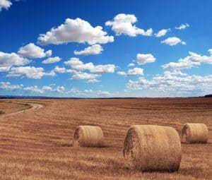 prawo rolne rzeszów dopłaty bezpośrednie podatek rolny